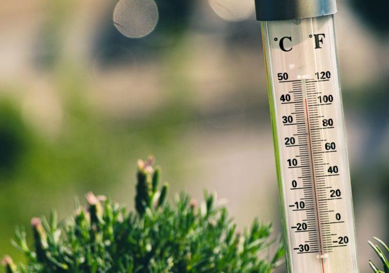 Thermometre chaleur