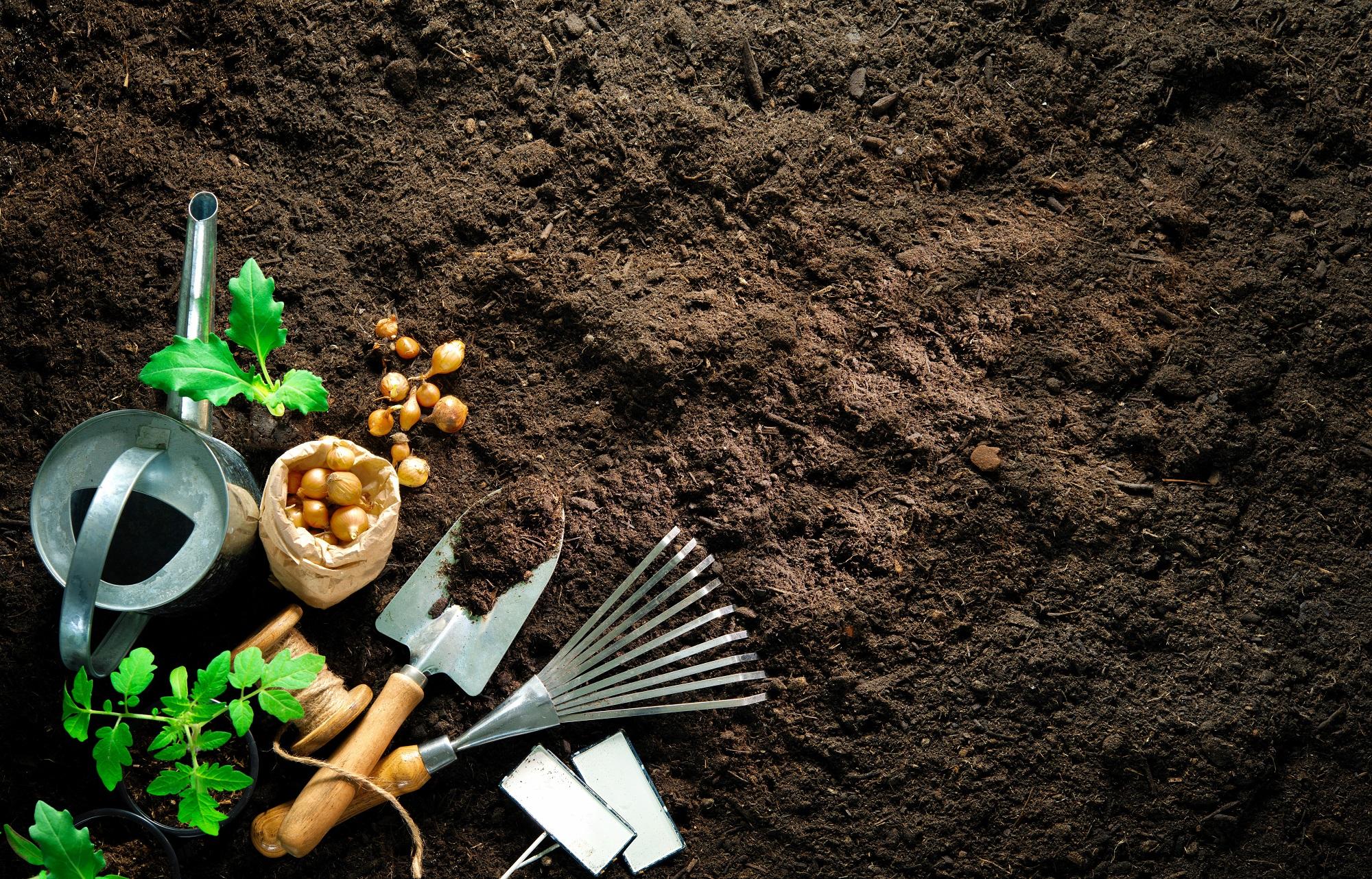 Les 10 outils de jardinage indispensables